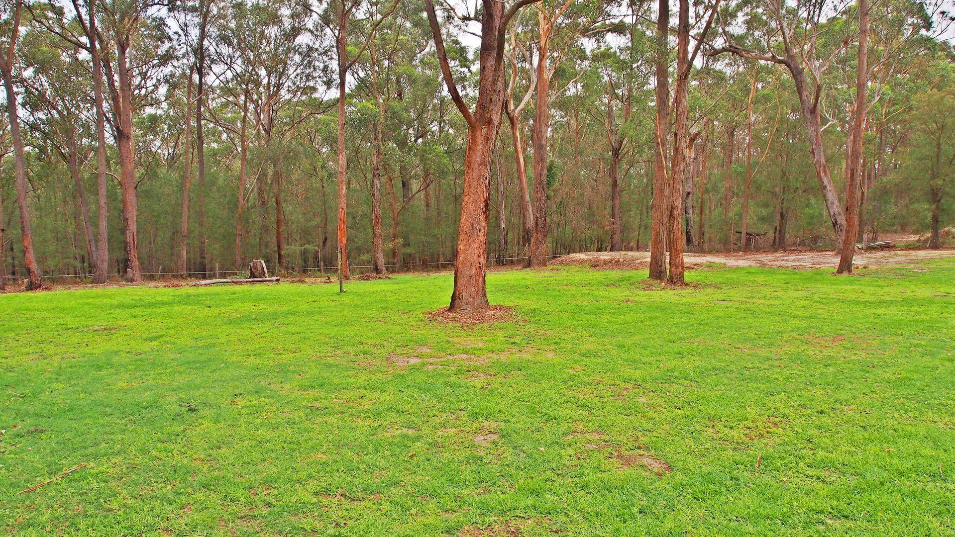 Moruya NSW 2537, Image 1