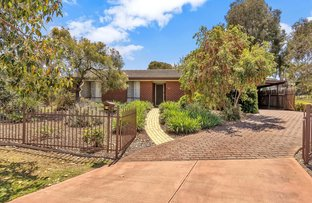Picture of 50 Allchurch Avenue, Redwood Park SA 5097