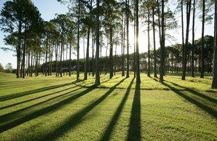 Lot 18 Sanctuary Pines, Sanctuary Cove QLD 4212