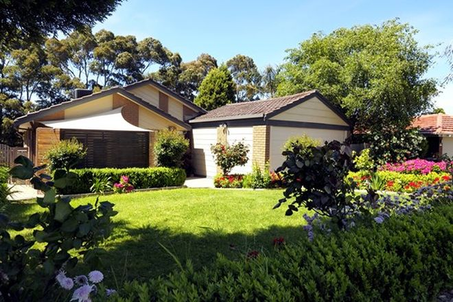 Picture of 8 Amersham Drive, WANTIRNA VIC 3152