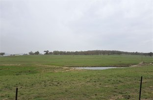 Picture of 1088A New England Gully Rd, Moonbi NSW 2353