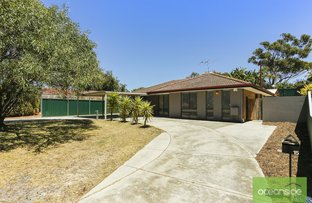 Picture of 15 Cordova Court, Craigie WA 6025