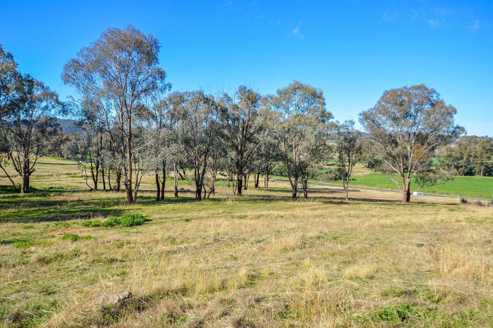 180 Lesters Lane, Mudgee NSW 2850, Image 0