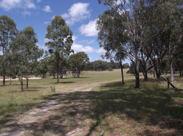 Liston NSW 2372, Image 2