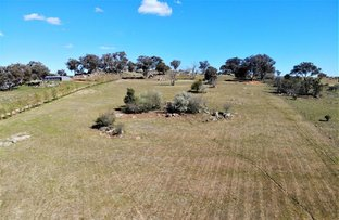 Picture of 13/185 Spring Creek Road, Young NSW 2594