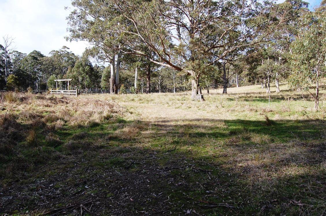 Cunnawarra Trail, Ebor NSW 2453, Image 1