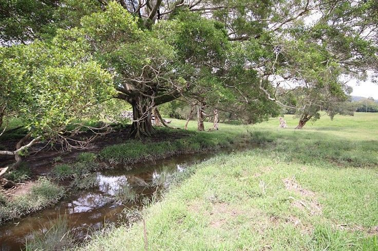 Reserve Creek Road, Reserve Creek NSW 2484, Image 2