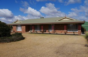 Picture of 82 Almond Road, Leeton NSW 2705