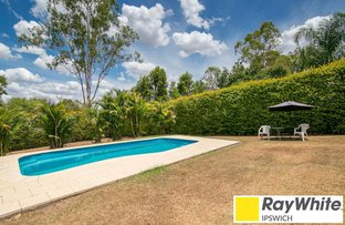 Picture of 23 Holmes Street, North Ipswich QLD 4305