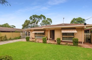 Picture of 77 Tenth Avenue, Royston Park SA 5070