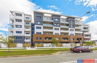 104/2 Peter Cullen Way, Wright ACT 2611