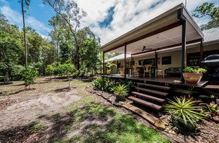 Picture of 8 Campbells Road, Cootharaba QLD 4565
