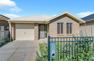 Picture of 19 Dudley Street, Mansfield Park SA 5012