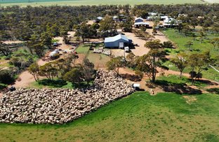 Picture of 2662 Southern Cross - Marvel Loch Road, Southern Cross WA 6426