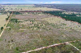 Picture of Carrs Creek road, Longford VIC 3851