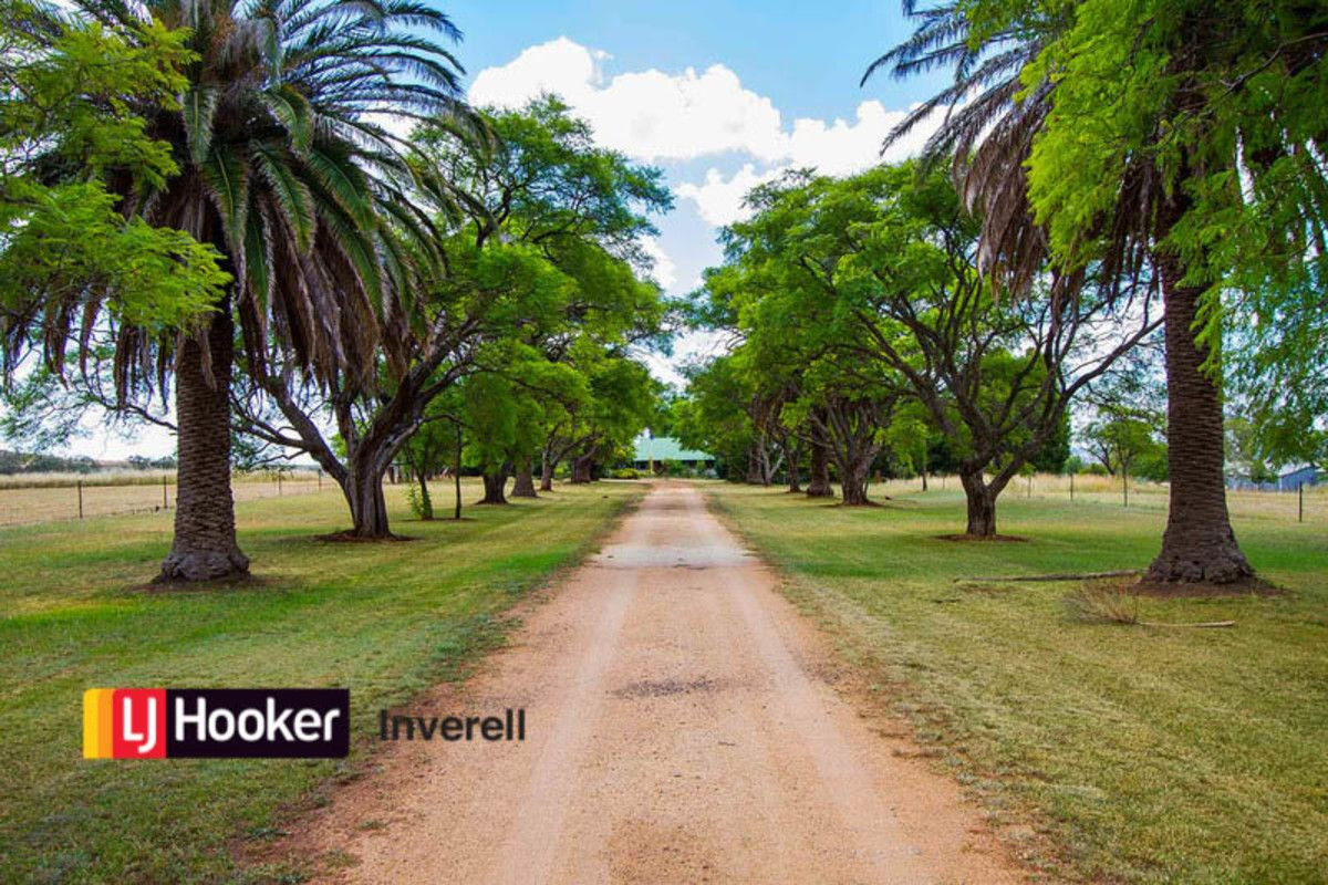 52 Roselea Road, Inverell NSW 2360, Image 0