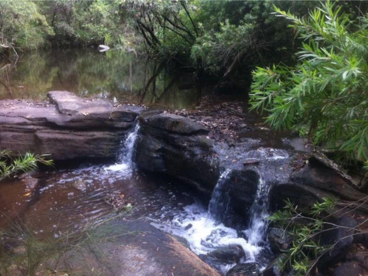 728 Yabbra Road, Bonalbo NSW 2469, Image 0