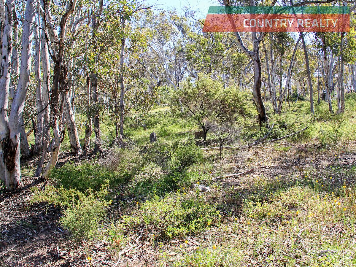 325 Coondle West Road, Toodyay WA 6566, Image 0