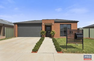 Picture of 33 Greenfield Drive, Epsom VIC 3551