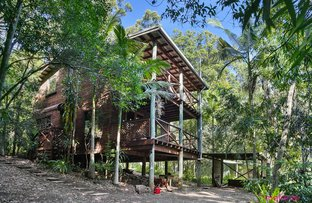 Picture of 1 Palmers Rd, Mcleans Ridges NSW 2480