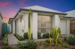 Picture of 7 Wallum Place, Palmview QLD 4553
