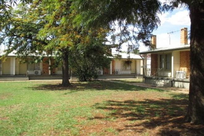 Picture of COONAMBLE NSW 2829
