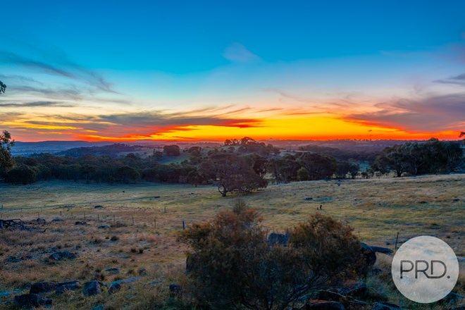 Picture of 669 Big Springs Road, BIG SPRINGS NSW 2650