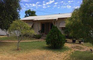Picture of Warren NSW 2824