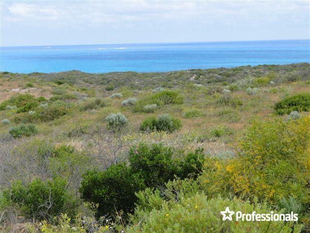 50 African Reef Boulevard, Greenough WA 6532, Image 0