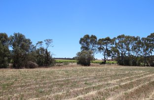 Picture of Lot 300 Burra Street, Mintaro SA 5415