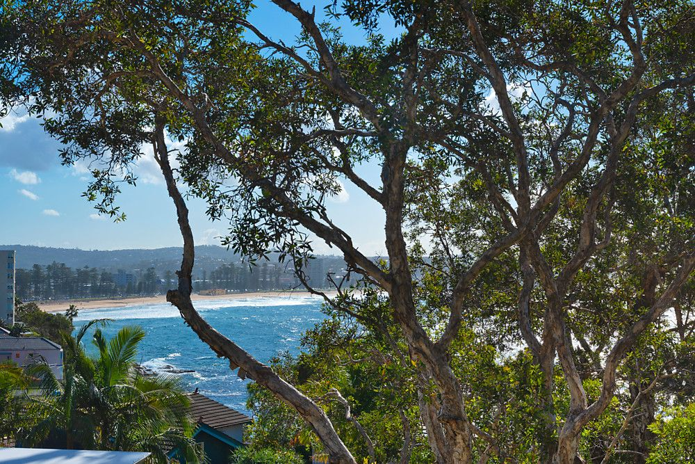 4 Montpelier Place, Manly NSW 2095, Image 2