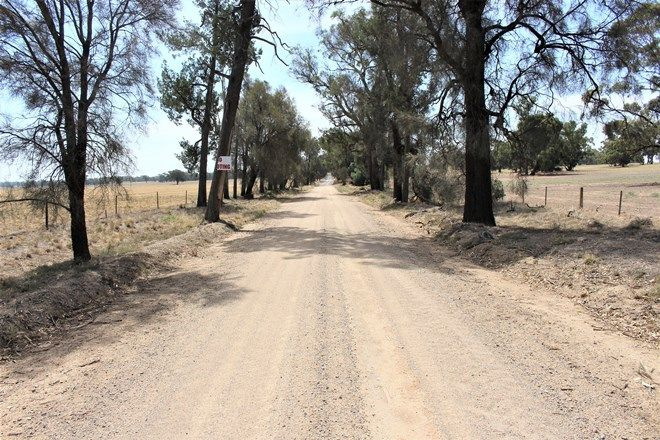 Picture of ''Smiths'' Warmatta Road, MULWALA NSW 2647