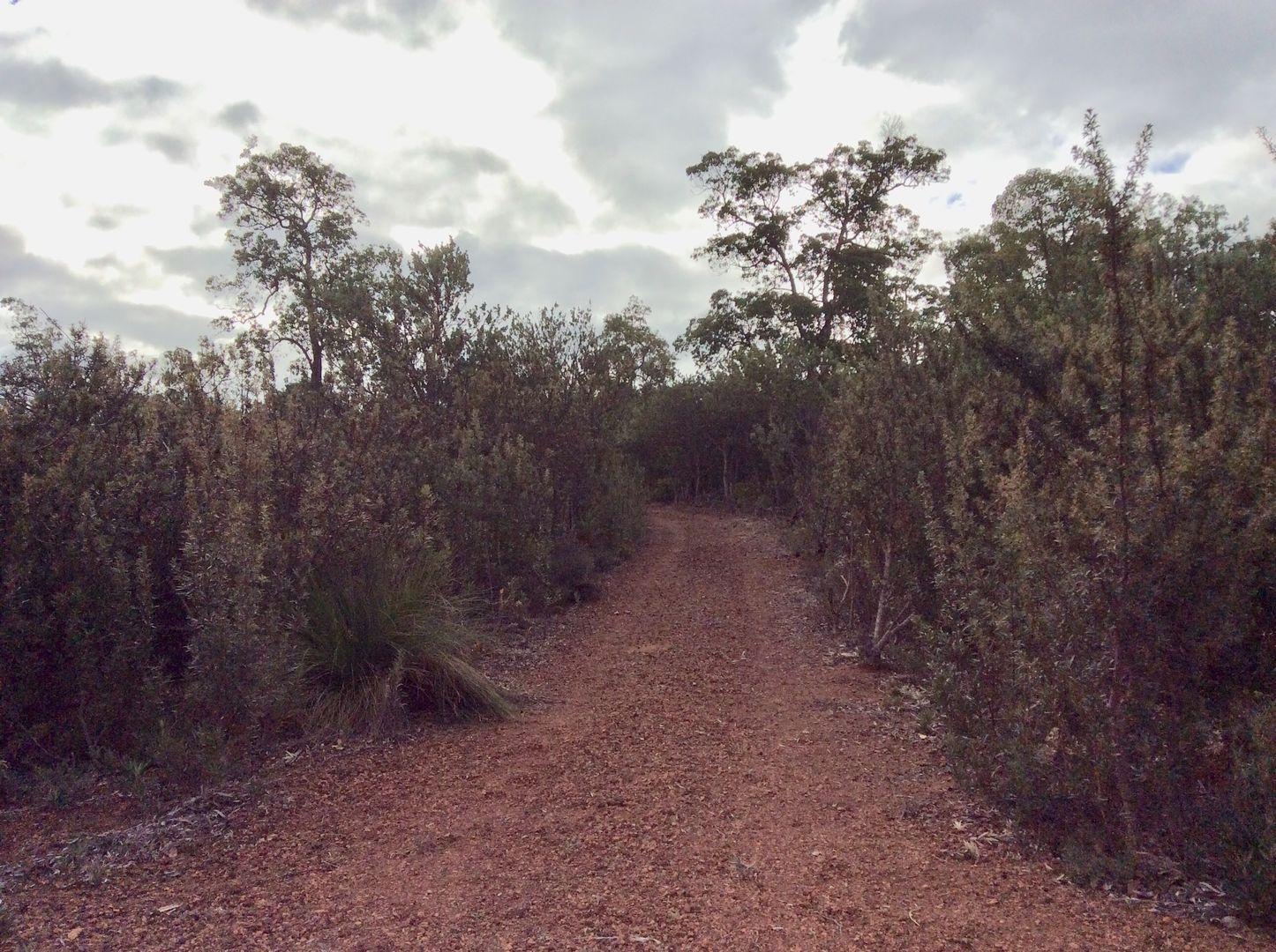 186 Wattle Way, Morangup WA 6083, Image 2