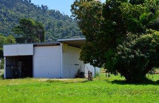 Lot 1 Butler Road, Bingil Bay QLD 4852