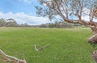 Picture of Lot 6 Princes Highway, Bolwarra VIC 3305