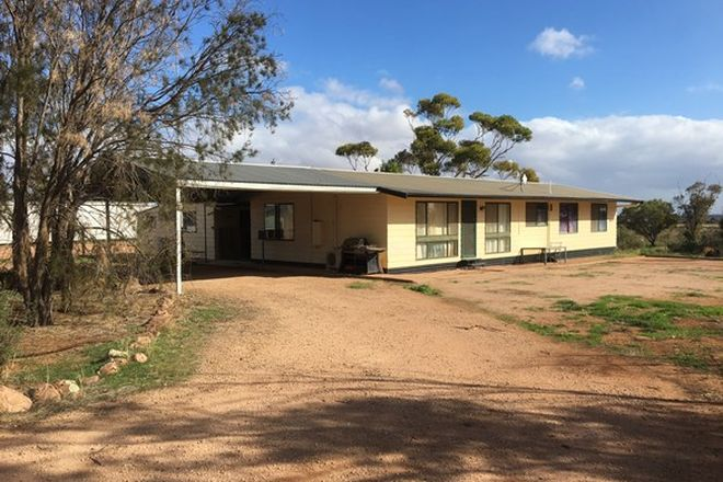 Picture of 288 Locks Road, WARNERTOWN SA 5540
