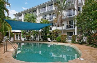 Picture of 305 Coral Coast Drive, Palm Cove QLD 4879