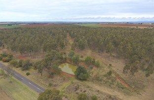 Picture of 2 Plantation Properties @ Wattlegrove, Kingaroy QLD 4610