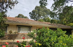 Picture of 50A Bevington Road, Glenunga SA 5064