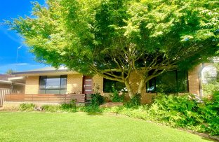 Picture of 26 Ross Crescent, Griffith NSW 2680