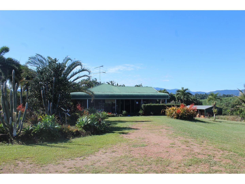 173 Kinjun Road, Dingo Pocket QLD 4854, Image 2