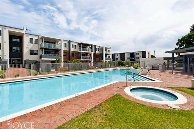 Picture of 19/189 Swansea Street, EAST VICTORIA PARK WA 6101