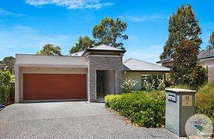 Picture of 12 Liquid Amber Drive, Pokolbin NSW 2320