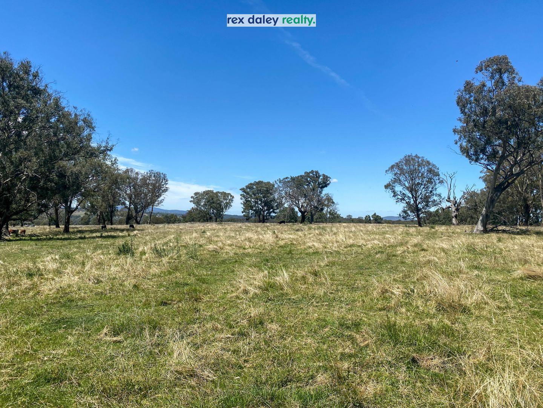 13497 Guyra Road, Tingha NSW 2369, Image 2