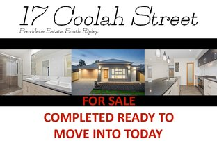 Picture of 17 Coolah St, South Ripley QLD 4306