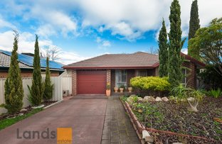 Picture of 6 Yellow Wood Court, Greenwith SA 5125