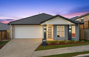 Picture of 11 Stellar Street, Springfield Lakes QLD 4300