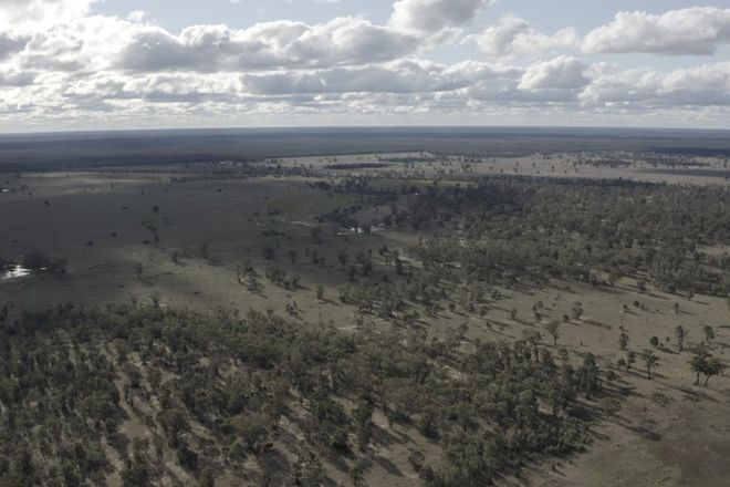Picture of BARADINE NSW 2396