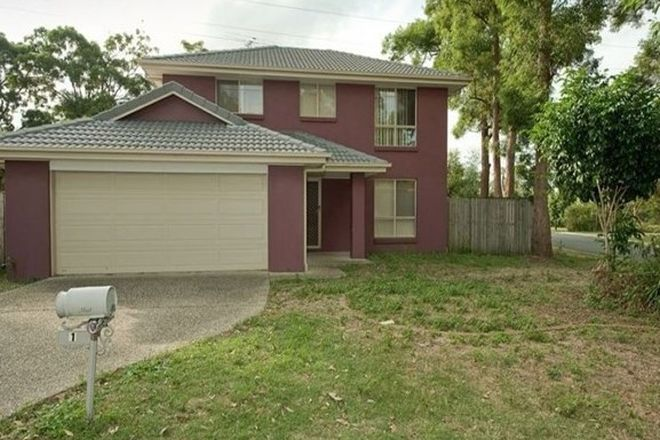 Picture of 1 Tuckeroo Place, SUNNYBANK HILLS QLD 4109