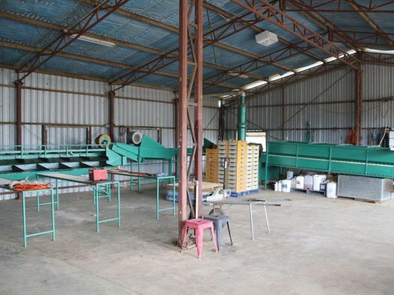 140 De Lacy Road, Dimbulah QLD 4872, Image 1